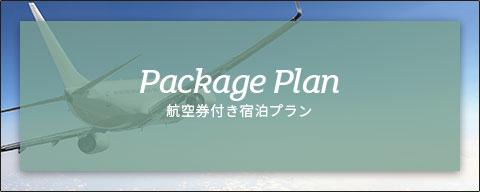 Package plan 航空券付き宿泊プラン
